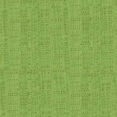 Lime Green Banjo Fabric